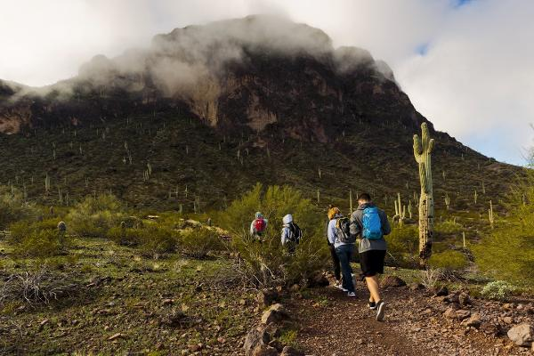 HIking trails in Arizona's Sonoran Desert