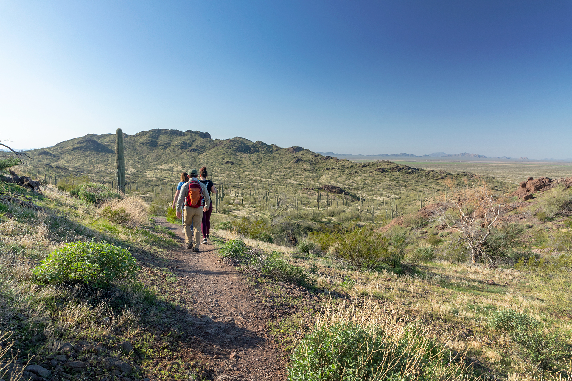 Find a hiking trail for every skill level, from easy walks to tough climbs!