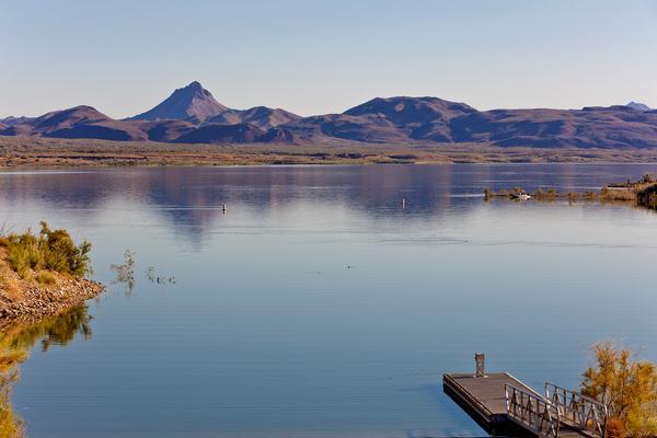 Alamo Lake, Arizona's premier bass fishing destination.