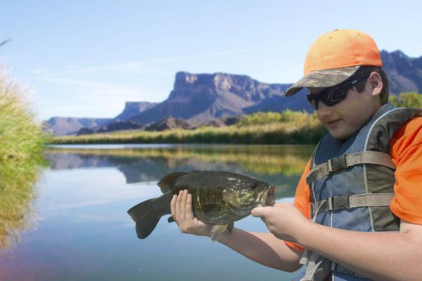 Colorado River Smallmouth