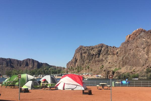 Buckskin Camping along the Colorado River