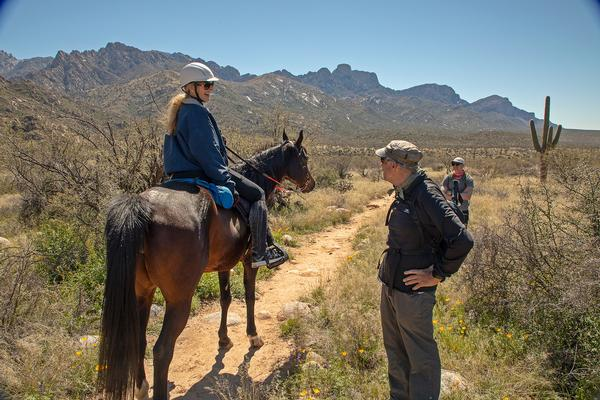Horseback Riding Catalina Southern Arizona
