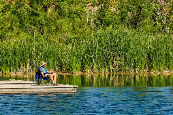 An angler sits on the pier of the lagoon at Dead Horse Ranch State Park, with green cattails and trees behind him.