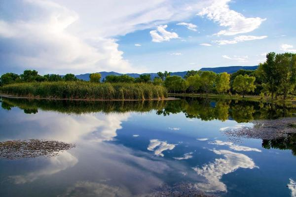 Dead Horse Ranch Lagoons