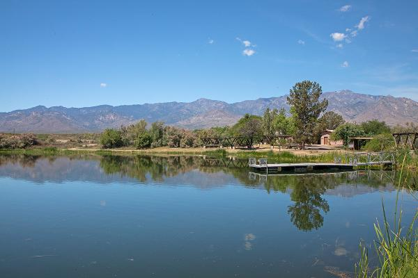 A view of Dankworth Pond with mountains in the background.