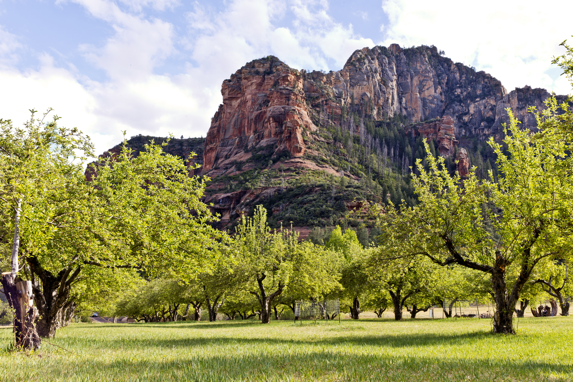 Slide Rock State Park has nearly 300 apple trees