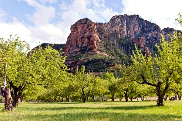 Slide Rock State Park in Sedona with a stunning backdrop of red rocks by the apple orchards. A great place to visit.
