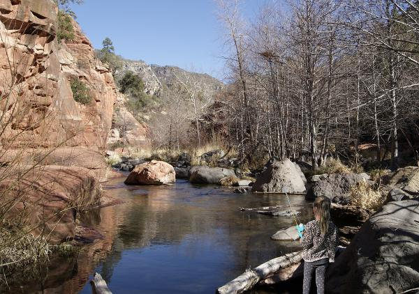 Oak Creek trout fishing from Slide Rock State Park