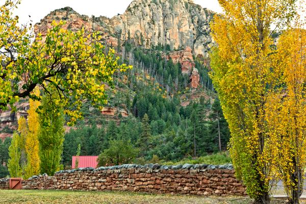 Beautiful backdrop of Oak Creek Canyon with fall foliage in the foreground.