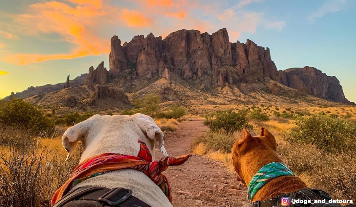 Arizona hiking near phoenix