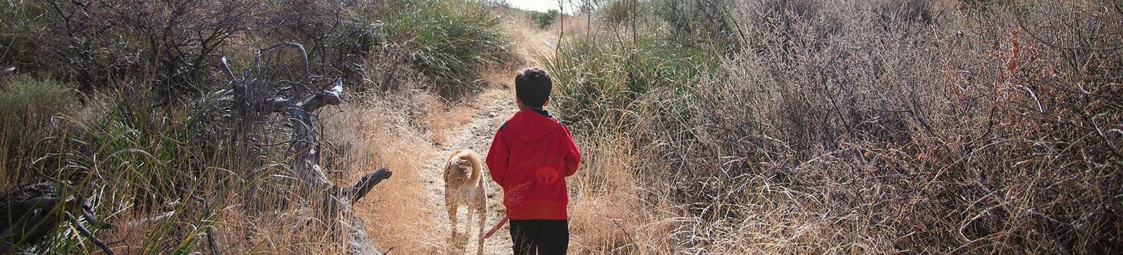 Arizona's Dog Friendly Parks | Arizona State Parks