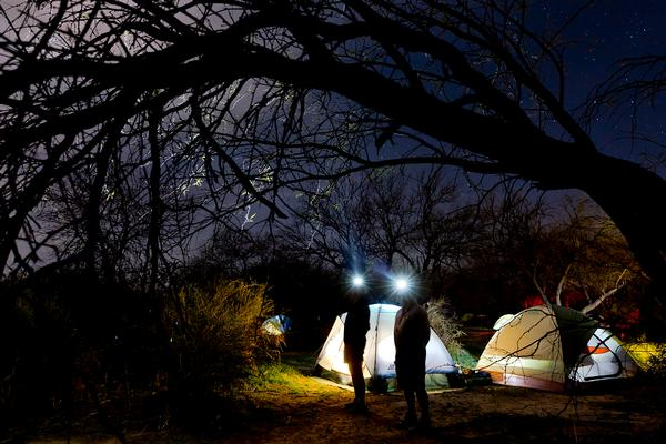 Two campers at night with headlamps, exploring the dark night sky. Two glowing tents are behind them.