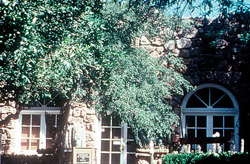 Smith Building in 1977