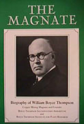 The Magnate. book cover