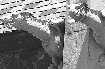 Close up of gargoyles on Nativity of the Blessed Virgin Mary. Photo by Tony Schierl.