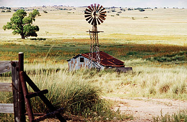 Windmill in 1998