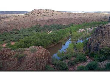 Natural Areas Program Advisory Committee- NAPAC